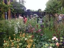 The Cloudy Bay Sensory Garden