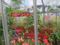 Lust - «Peep Show»